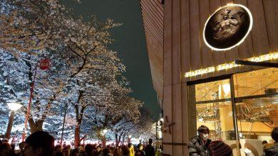 Photo of 中目黑星巴克旗艦店(星巴克臻選–東京烘培工坊)走進隈研吾的最新建築作品