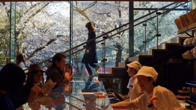 Photo of 東京咖啡店推薦必去8選!隈研吾星巴克、淺草Fuglen、還有還有…