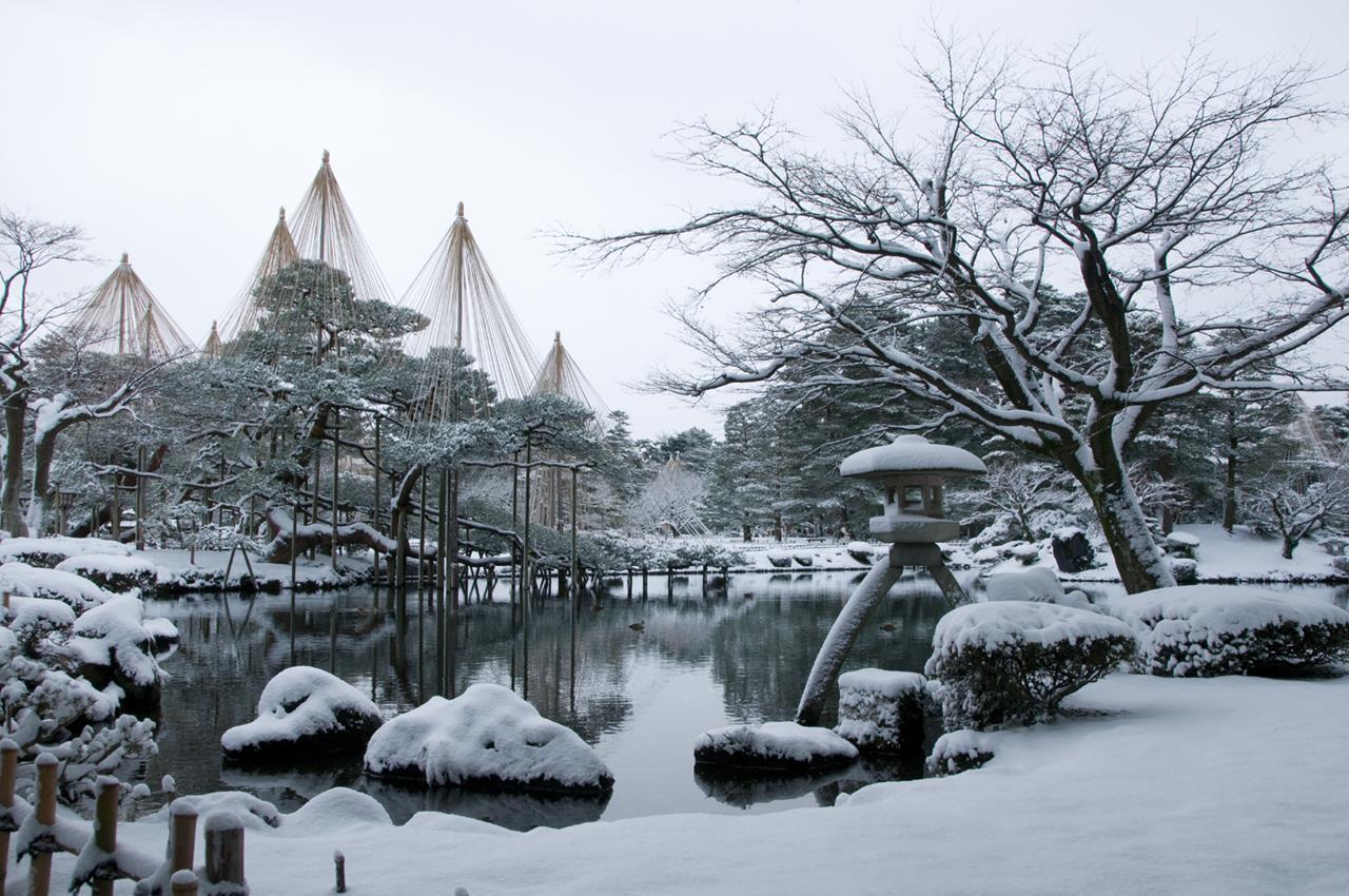 金澤雪吊り