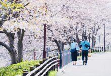 Photo of (日本觀察)日本男戀愛時拉不下臉做的那些事–大男人主義還是日本文化?