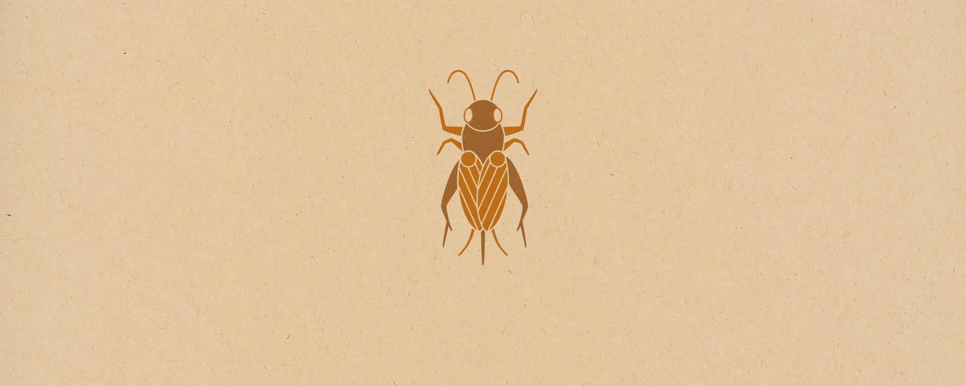 Photo of 日本無印良品推出「蟋蟀仙貝」!吃昆蟲食拯救地球?!你敢嘗試嗎?