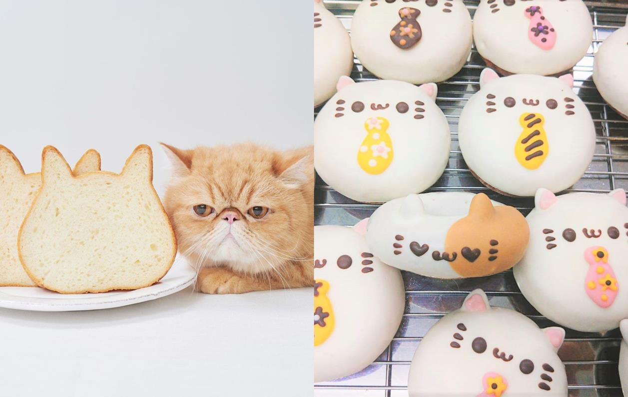 Photo of 貓奴必買!日本可愛貓咪形狀美食6選推薦 – 貓咪吐司、貓咪起司蛋糕、貓咪甜甜圈,還有還有…