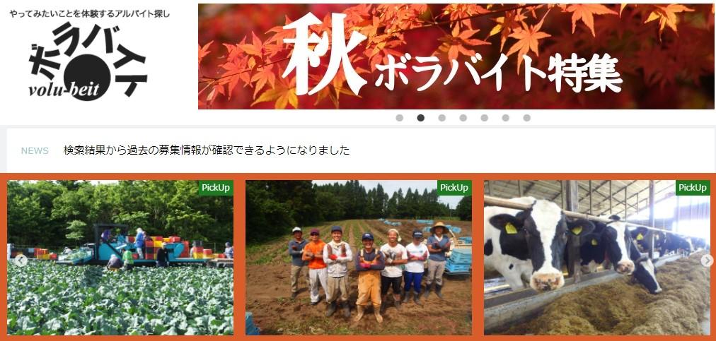 日本打工度假Volubeit